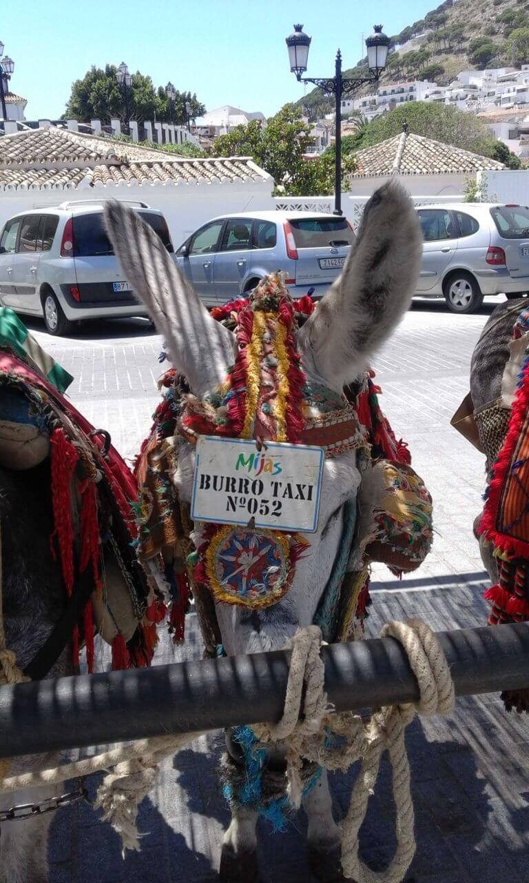 Esel Taxi Mijas Pueblo