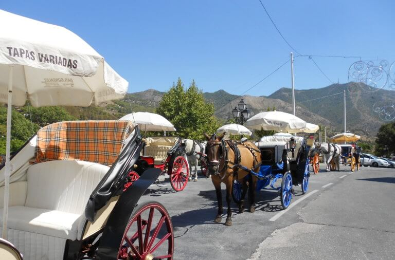 Pferdekutschen in Mijas Pueblo
